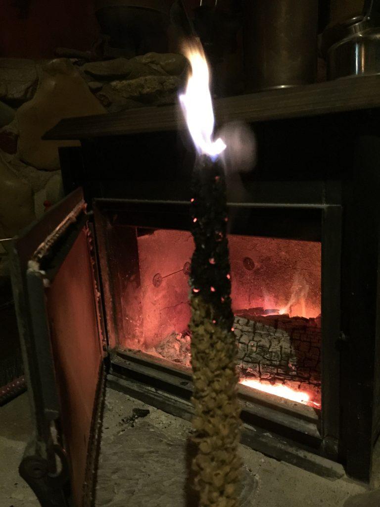 burning mullein